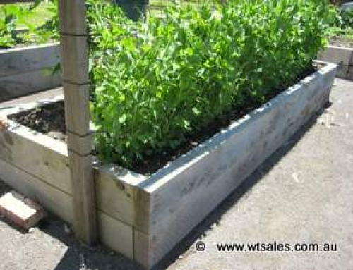 How do I make a raised garden bed?